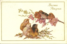 """Cartolina """"Buona Pasqua"""", Uccellini Su Un Ramoscello E Pulcini (S28) - Pasqua"""
