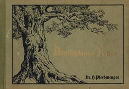 Buch Politik Deutsches Leben Pferdmenges, H. Dr. 1930 Verlag Deutsches Haus 12 Kapitel Mit 12 Kartenbildern II (Einband  - Politiek