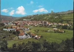 PIEMONTE - S. STEFANO BELBO - PANORAMA - VIAGGIATA 1969 - Italia