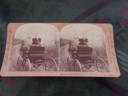 Meadville US KEYSTONE ATTELAGE CHEVAL /10418 ALWAYS TAKE A HORSE YOU CAN DRIVE WITH ONE HAND - Photos Stéréoscopiques
