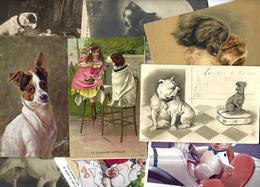 Lot 2026 De 10 CPA Chien Dog Déstockage Pour Revendeurs Ou Collectionneurs - 5 - 99 Karten