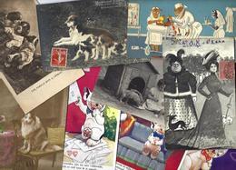 Lot 2028 De 10 CPA Chien Dog Déstockage Pour Revendeurs Ou Collectionneurs - 5 - 99 Karten