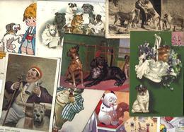 Lot 2029 De 10 CPA Chien Dog Déstockage Pour Revendeurs Ou Collectionneurs - 5 - 99 Karten