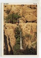 ISRAEL - AK 360551 Ein-Gedi - Waterfall At Nachal Arugot - Israel