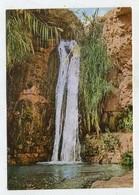 ISRAEL - AK 360552 Ein-Gedi - The Hidden Pool At Nachal David - Israel