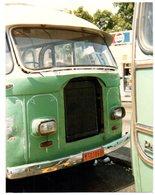 35mm ORIGINAL PHOTO BUS UK LEYLAND BEDFORD - F149 - Photographs