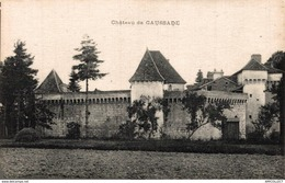 1140-2019    TRELISSAC   CHATEAU DE CAUSSADE - Frankreich