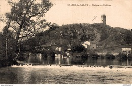 9863  -2018   SALIES DU SALAT    RUINES DU CHATEAU - Salies-du-Salat