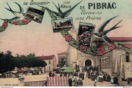 9865  -2018              MES VOEUX PIBRAC - Pibrac