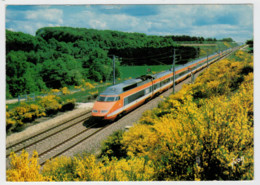 FRANCE  RECORD DU MONDE     TRAIN- ZUG- TREIN- TRENI- GARE- BAHNHOF- STATION- STAZIONI  2 SCAN (VIAGGIATA) - Treni