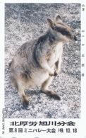 JAPAN Telefonkarte -TCP 110-001 - Känguru  - Siehe Scan - Sonstige