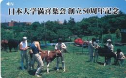 JAPAN Telefonkarte - 110-016- Kuh, Rind  - Siehe Scan - Kühe