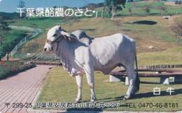 JAPAN Telefonkarte - 231-1043- Kuh, Rind  - Siehe Scan - Kühe