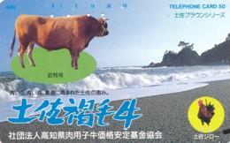 JAPAN Telefonkarte - 330-41272- Kuh, Rind  - Siehe Scan - Kühe
