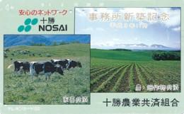 JAPAN Telefonkarte - 430-4738 - Kuh, Rind  - Siehe Scan - Kühe