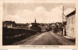 2954-2019   LA SELLE SUR LE BIED  ROUTE DE COURTENAY - France