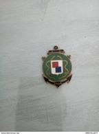 7816-2019   INSIGNE MILITAIRE FAB NEANT - Militari