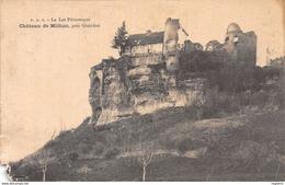24-CHATEAU DE MILHAC-N°2219-E/0027 - France