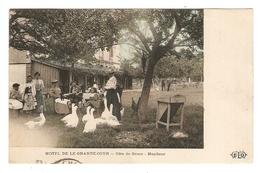 14 - HONFLEUR HOTEL De La GRANDE COUR - EDITIONS ELD - 1910 - OIE BASSE COUR - BELLE ANIMATION - Honfleur