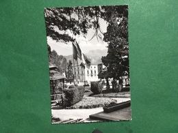 Cartolina Vittorio Veneto - Giardini Pubblici - 1964 - Treviso