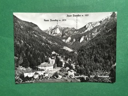 Cartolina Roncobello M.1009 - Panorama - 1963 - Bergamo