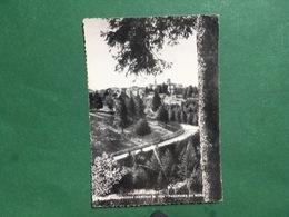 Cartolina Boscochiesanuova - Panorama Da Nord - 1959 - Verona