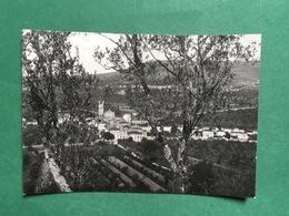 Cartolina Negar Di Valpolicella - 1953 - Verona