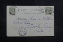 FRANCE - Affranchissement Type Blancs De Orsay Sur Carte Postale Pour La Serbie En 1902 - L 40791 - Marcophilie (Lettres)