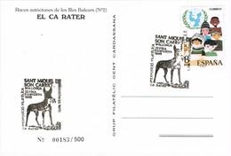 33714.  Tarjeta  SANT MIQUEL De SON CARRIÓ (Baleares) Mallorca 1995. Perro, Chien, Dog, CA RATER - 1931-Hoy: 2ª República - ... Juan Carlos I