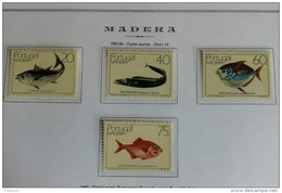 PORTOGALLO ( MADEIRA ) ANNO 1985 PESCI - NUOVI MNH ** - Madeira