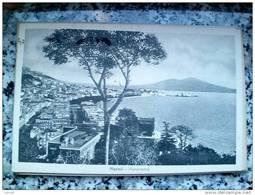 ITALY CAMPANIA - NAPOLI ( NAPOLI ) PANORAMA - VIAGGIATA REGNO 1931 - Napoli