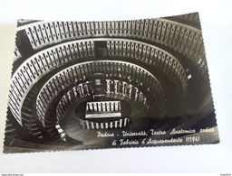 ITALY - PADOVA - ( PADOVA ) UNIVERSITA' TEATRO ANATOMICO ANTICO DI FABRIZIO D' ACQUAPENDENTE - VIAGGIATA 1956 - Padova