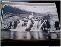 ITALY CAMPANIA - CASERTA  ( CASERTA ) PALAZZO REALE  CASCATA  DELFINI VIAGGIATA REGNO 1915 - Caserta