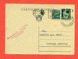 INTERI POSTALI. C 130 - 6. 1946-.. Repubblica