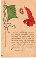 Veneto - Vicenza - Comitato Femminile Vicentino 1915 - - Vicenza