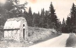 39-LA SAVINE ROUTE DE SAINT LAURENT A MOREZ-N°2226-F/0287 - France