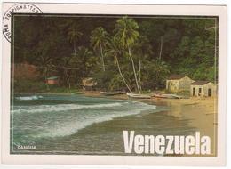 °°° 13729 - VENEZUELA - CANGUA - 1996 °°° - Venezuela