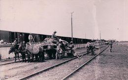 Chine Pékin ?, Chemin De Fer, Train Et Attelages, Transfert De Marchandises (876) - China