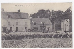 Yvelines - Buc - Ferme Du Haut Buc - Buc