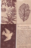 ORKAN LOTHAR Vom Dez. 1999 . Lot 4 Cpm 9x14 En BOIS: 2x Végétaux + 1x Colombe +1x Texte Catharina E. GOETHE (1731-1808) - Cartes Postales