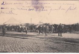 CAEN :  La Foire Aux Chevaux - Caen