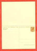 INTERI POSTALI-C 169  - NUOVA - 6. 1946-.. Repubblica
