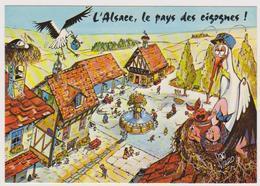 VIARD   Ed La Cigogne N°7 -  HUMOUR  Alsace Cigogne Facteur Enfant  - CPM  10,5x15  TBE 1985 Neuve - Künstlerkarten