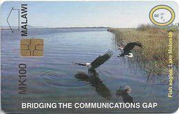Malawi - MPTC - Fish Eagles, Lake Malombe (New Logo), 100Mk, Chip Gem5 Red, Used - Malawi