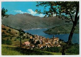 PARZANICA    PANORAMA  CON IL  LAGO  D' ISEO            (VIAGGIATA) - Italia