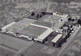 SAINT LOUIS - Société Des Textiles En Biais - Saint Louis