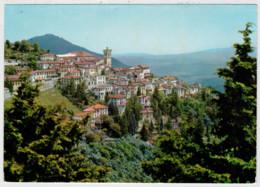 VARESE    PANORAMA   DAL  SACRO  MONTE             (VIAGGIATA) - Varese
