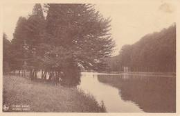 AK Tervuren Tervoueren - Le Parc - (43063) - Tervuren