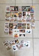 Lot De 48 Cartes (dont 13 En Double) - Anciennes Affiches Et Publicités - 5 - 99 Karten
