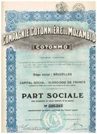 """Titre Ancien - Compagnie Cotonnière Du Mozambique """"COTONMO"""" - Titre De 1927 - N° 025341 - Afrika"""